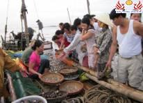 Kinh nghiệm mua hải sản tại Sầm Sơn